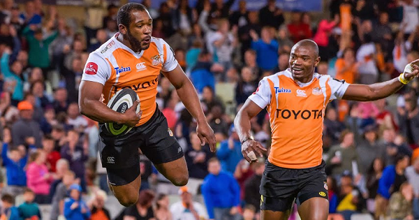 Cheetahs see off Zebre in first ever home PRO14 match in Bloemfontein