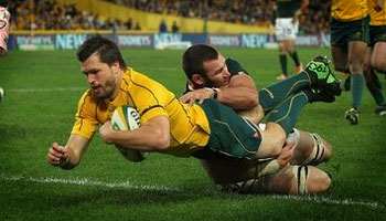Wallabies bounce back with a strong performance against South Africa