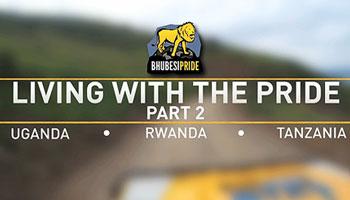 Living With The Pride - Part 2 - Uganda, Rwanda, Tanzania