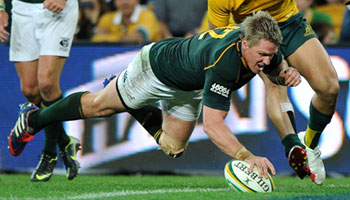 Springboks full of belief after thumping the Wallabies in Brisbane