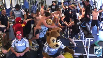 The Rugby team Harlem Shake collection