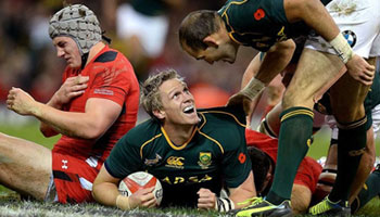 The Springboks outmuscle Wales at the Millennium Stadium