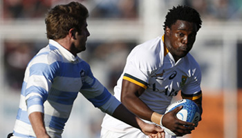 Springboks bounce back from defeat to win comfortably in Argentina