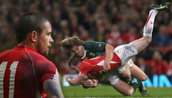 Shane Williams out for 10 weeks following Francois Steyn tackle