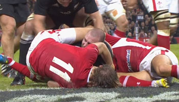Wales vs New Zealand Highlights - November 2012