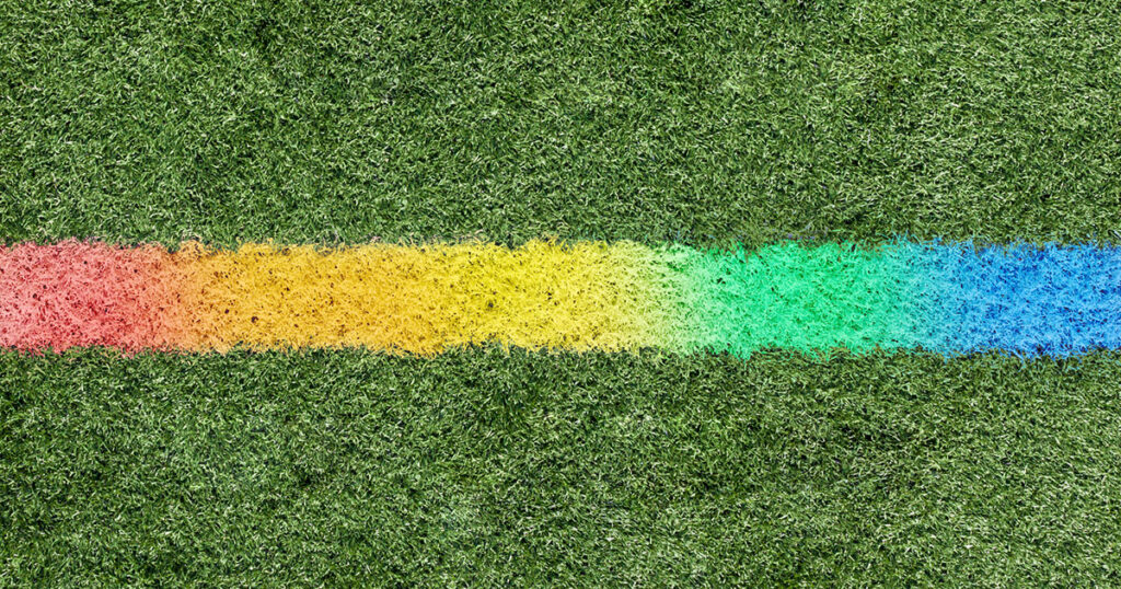 Rugby fields will get a unique look in France as part of anti-Homophobia campaign